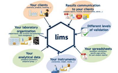 LIMS Implementation: Success Factors from a Project Manager Perspective